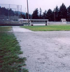 baseball field before edging