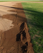 moving dirt to spread at the grass edge