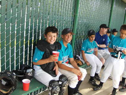 Building A Dugout Tips And Hints
