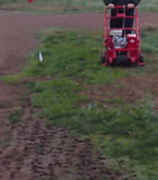 aerating the infield